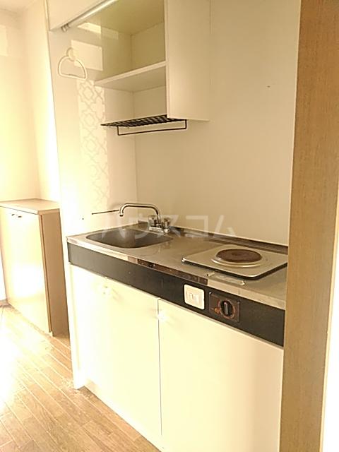 ラ・フランスKAZU  101号室のキッチン