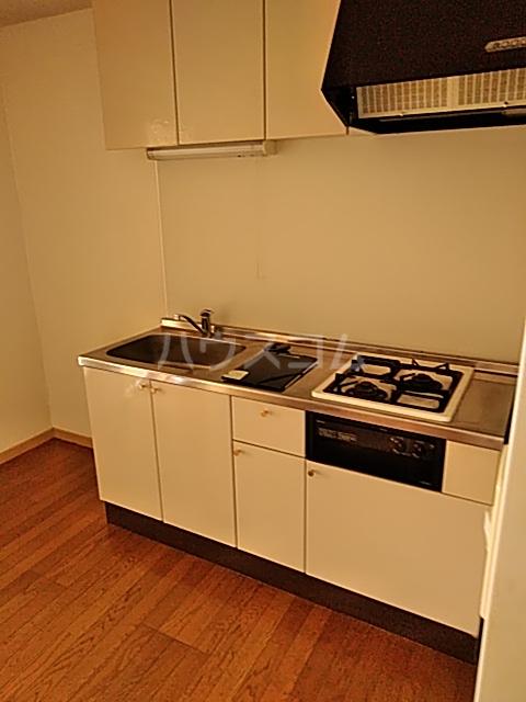 フェリーチェ 202号室のキッチン