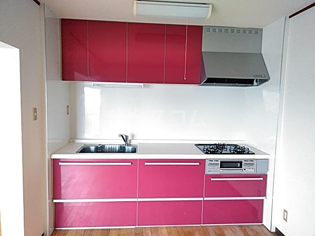 ピアメゾン鹿子 201号室のキッチン