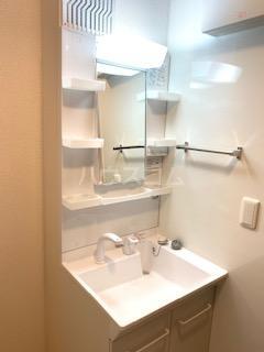 ハウス三生 203号室の洗面所