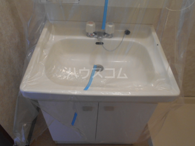 ベルサージュ21 303号室の洗面所