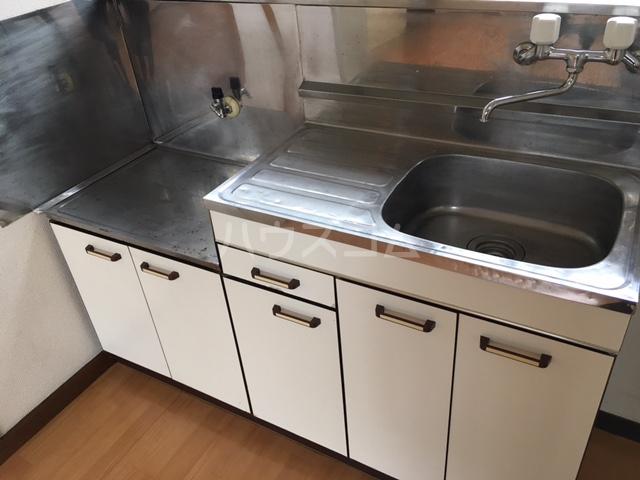 シャレル山王 41号室のキッチン