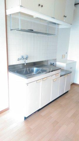 カスティージョ兼城 302号室のキッチン