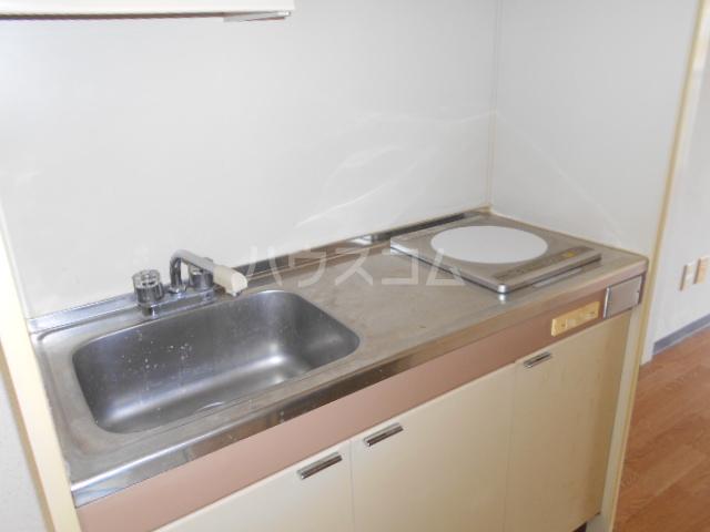 グリーンユースコーポ 302号室のキッチン