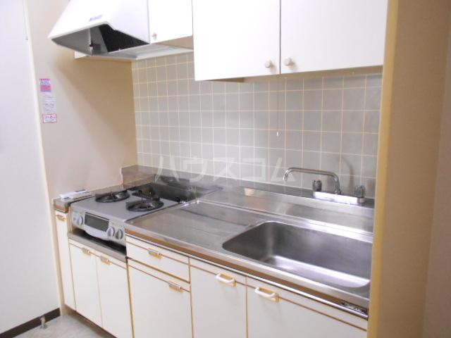 ベルテ桜 306号室のキッチン