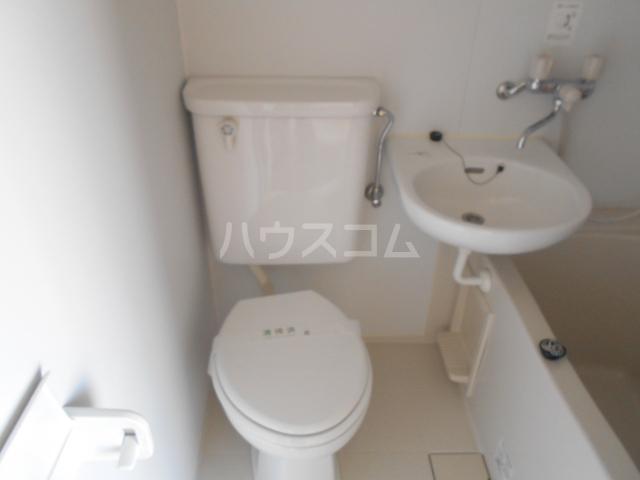 ハイツマックル 203号室のトイレ