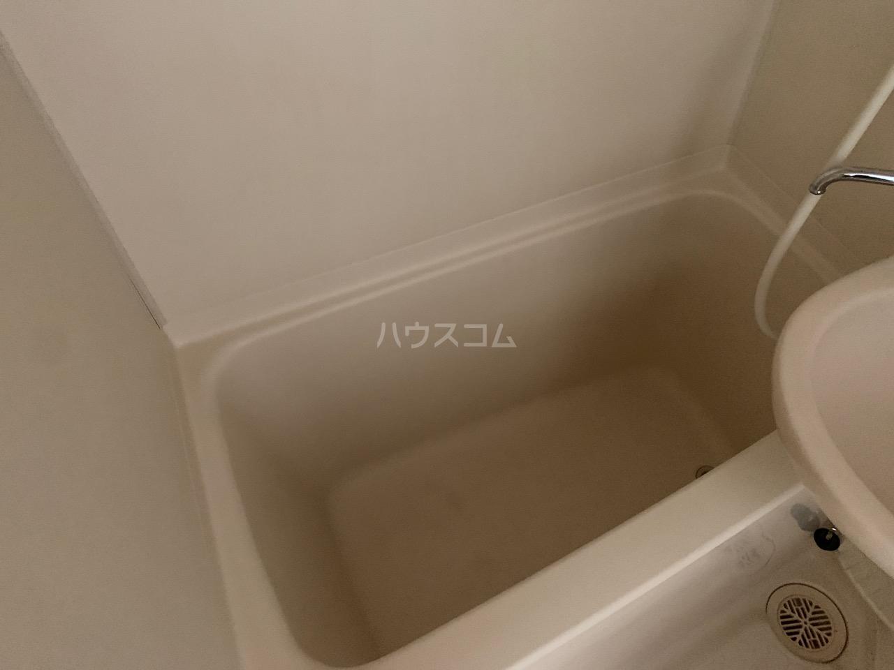 DSハウス 202号室の風呂