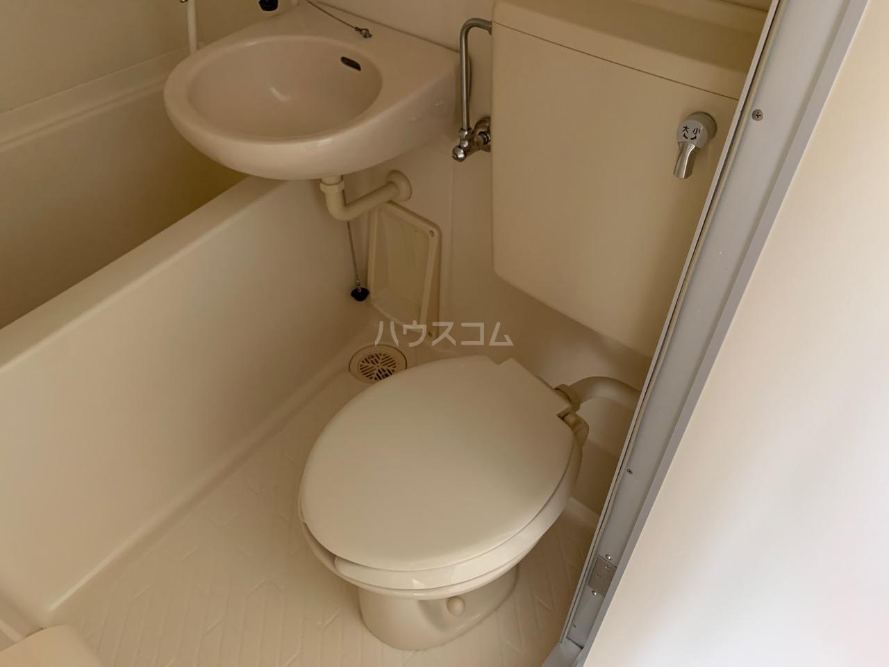 DSハウス 202号室のトイレ