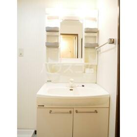 第二セーフズマンション 401号室の洗面所
