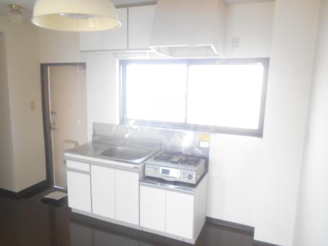 メゾン東矢島 201号室のキッチン