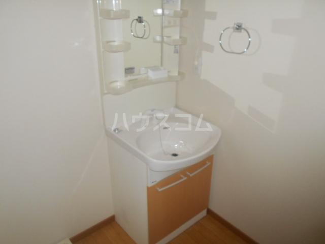 カーサルミエールB 202号室の洗面所