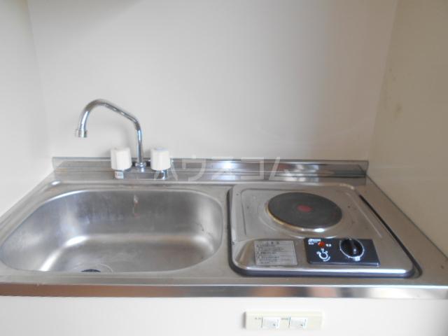 早川グリーンハイツ 301号室のキッチン