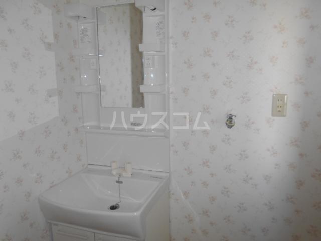 ハイツ篠崎Ⅰ 203号室の洗面所