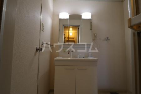 シルキーハイツ 203号室の洗面所