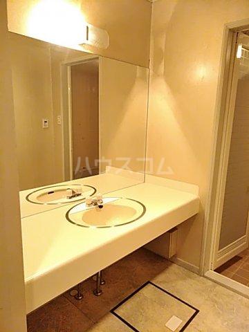 ラ・フルール神栖 107号室の洗面所