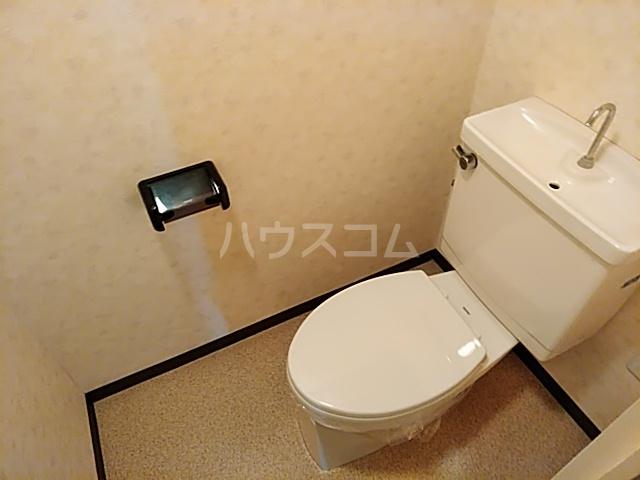 ハイツライラック 501号室のトイレ
