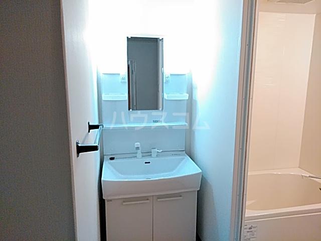 ハイツライラック 501号室の洗面所