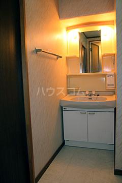 グランドハイツ石黒 307号室の洗面所