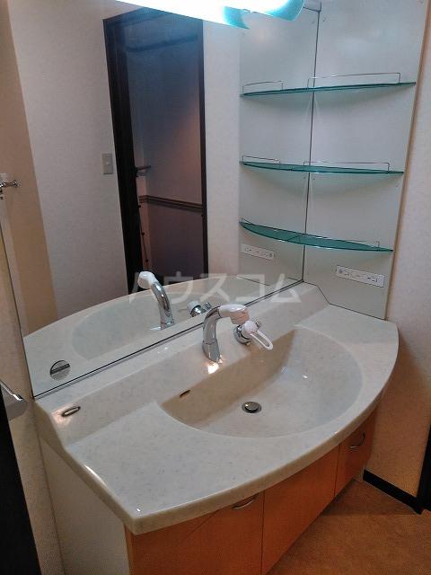 Grand Latour 205号室の洗面所