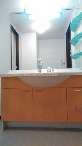 Grand Latour 206号室の洗面所