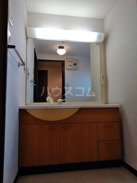 サウスプラザ六条 401号室の洗面所