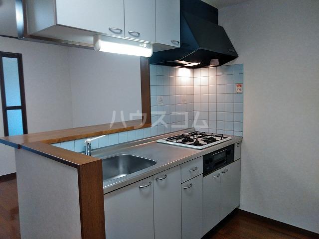 サウスプラザ六条 401号室のキッチン