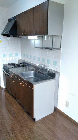 フィネス三条 302号室のキッチン