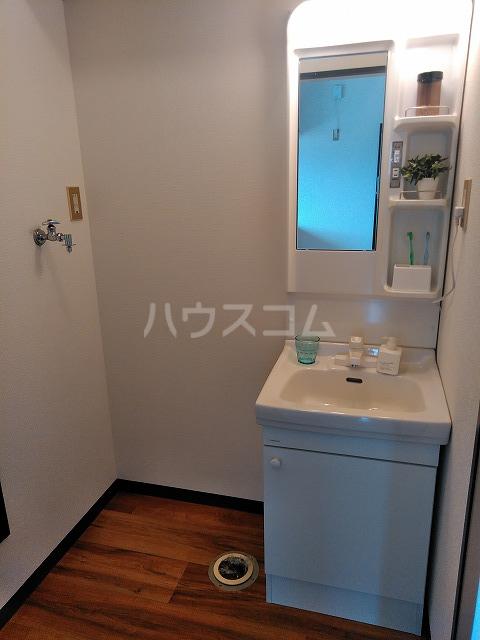 ヴィラ橋本 A棟 102号室の洗面所