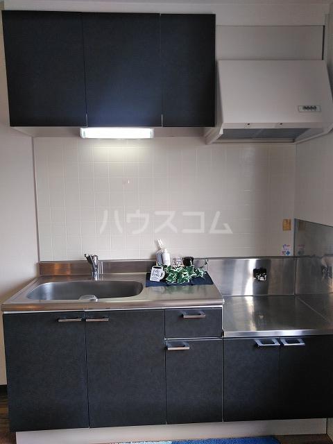 ヴィラ橋本 A棟 102号室のキッチン
