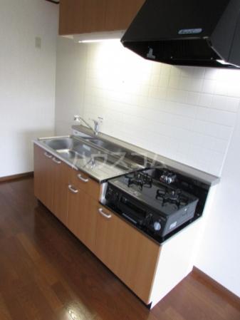 Gnosis Ⅱ 101号室のキッチン