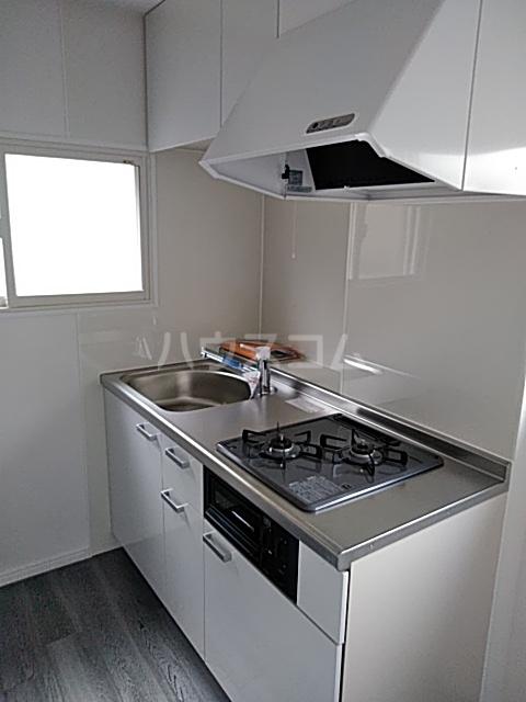 ヤングツリーズ 201号室のキッチン