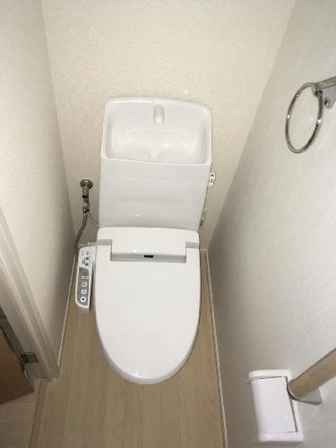 クレイノリバーサイド 203号室のトイレ