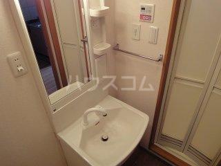 ルミナス・ウッド 00206号室の洗面所