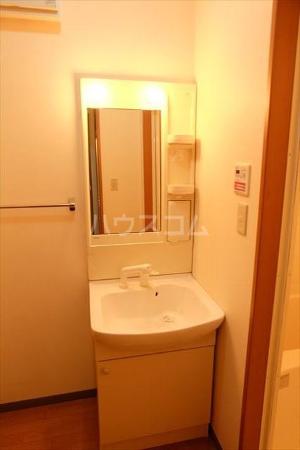 コート アベニュー 201号室の洗面所