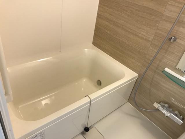 グレイス・ワン 102号室の風呂