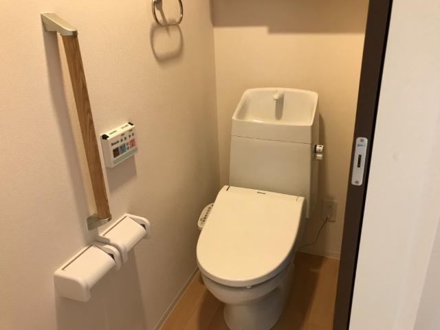 グレイス・ワン 102号室のトイレ