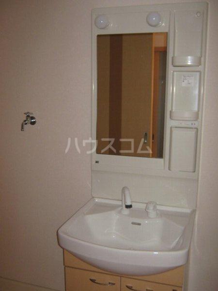 ガーデン鏡池 102号室の洗面所