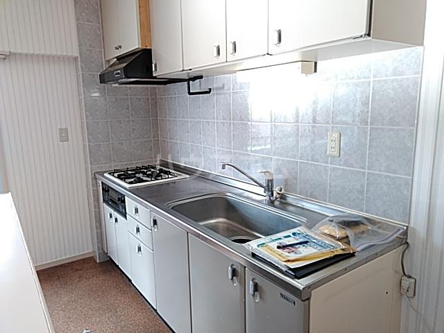 ヴィラウィスタリア 313号室のキッチン