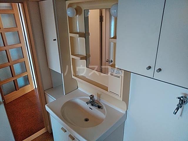 ヴィラウィスタリア 313号室の洗面所