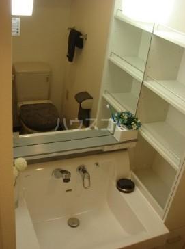 音羽クリニックビル 802号室の洗面所