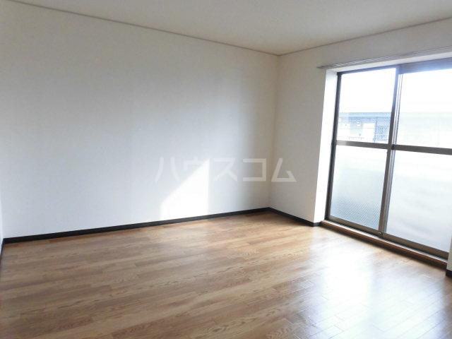 カターラヴィレッヂⅡ 302号室の居室