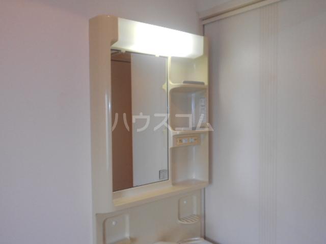 MAX 210号室の洗面所
