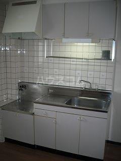 ニューシティパートⅢ 02010号室のキッチン