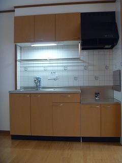 エンゼル・スクエア B 02010号室のキッチン
