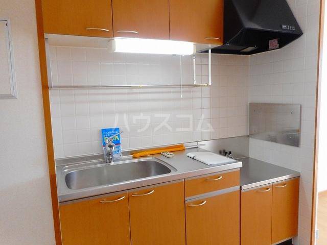 ペガサス・23 02030号室のキッチン