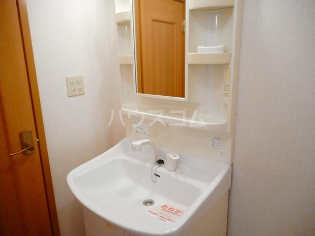 ペガサス・23 02030号室の洗面所