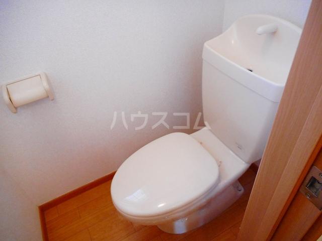 ペガサス・23 02030号室のトイレ