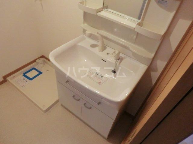 パッシオーネ C 201号室の洗面所