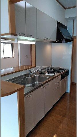 メゾン シリウス 401号室のキッチン