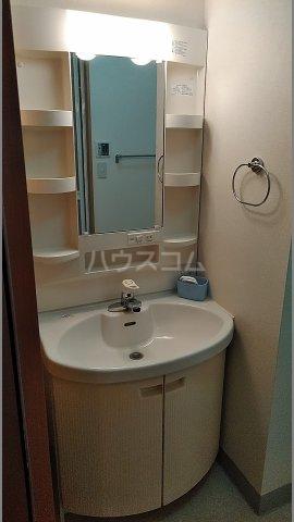 メゾン シリウス 401号室の洗面所